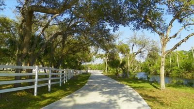 Relax on the Intracoastal amidst Moss Trimmed Mature Oak Trees.