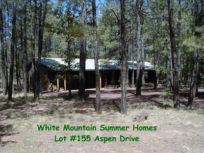 White Mountain Summer Home