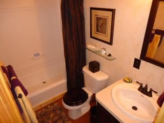 Bryson City cabin photo - Full Bath New and squeeky clean