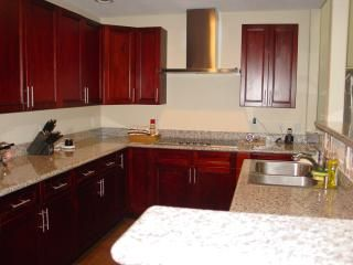 Coldspring house photo - Viking Professional seriers appliances, this dream kitchen has it all