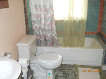 Downstairs full bathroom with custom tilework.
