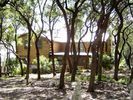 Wimberley House Rental Picture