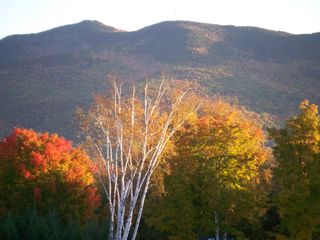 Ascutney farmhouse photo - View from the Guest Apartment window.