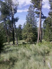 Flagstaff house photo - One of the dozens of easily accessible hikes in the area...