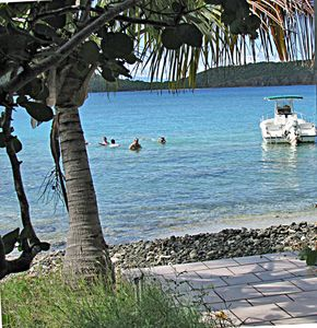 Culebra apartment rental - Best snorkeling, just walk into this pristine beach by Tamarindo beach house.