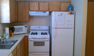 Interlochen house photo - Great appliances, gas stove, dishwasher, microwave