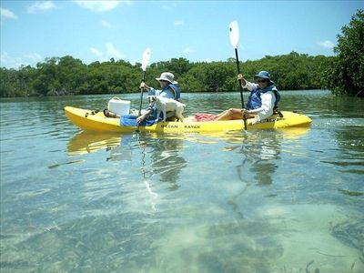 Kayaking in the Mangroves in the Gulf of Mexico a great Key West Adventure
