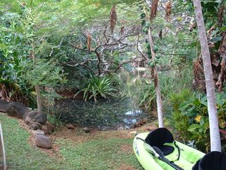 Moloaa Bay cottage photo - Kayak launch by river