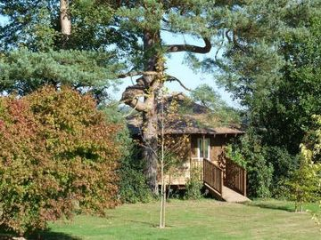 Eco-Lodge Tree House - ramp entrance from garden