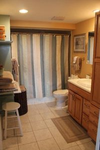 Master Bath hand held shower and jacuzzi tub photo 1
