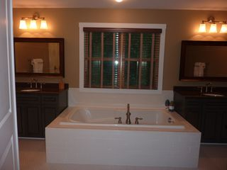 New Buffalo house photo - Master bath.