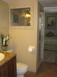 Another view of the guest bathroom with newly renovated shower