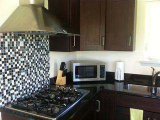 Austin apartment photo - gas cooktop & microwave