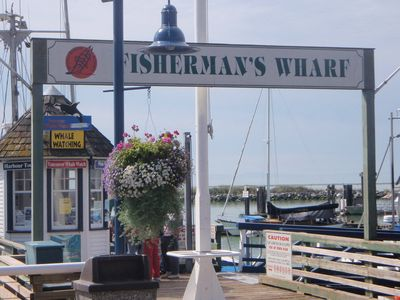 5 min walk to Fisherman's Wharf check out the fish market or go on a whale tour!