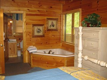 BEDROOM with jacuzzi tub and fire place