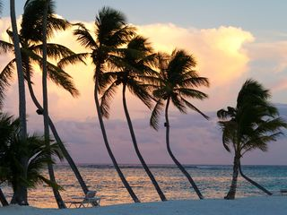 Punta Cana condo photo - Beautiful Sunset