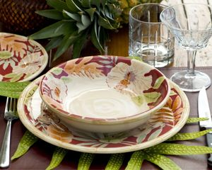Princeville house photo - Hawaiiana Dinnerware for your dining pleasure