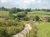 Dog Friendly, Wheelchair Accessible Harvest Cottage On Working Cattle Farm
