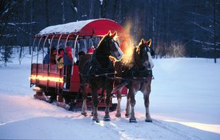 Crystal Mountain, Thompsonville house photo - Horse Drawn Sleigh Rides