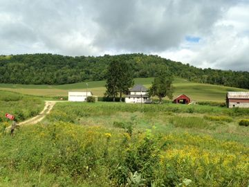 Fountain City farmhouse rental - The farm is set in a private valley on a dead end gravel road.