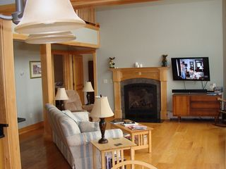 "West Wardsboro house photo - Sealed gas fireplace, 46"" LED TV with DirecTV & DVD & small DVD library."