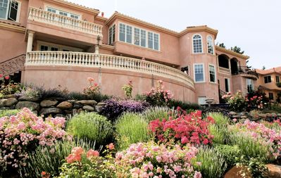 Gorgeous landscaping!
