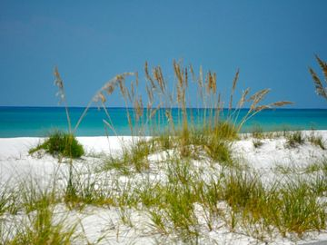 It doesn't get any prettier than this! Come and enjoy this gorgeous beach!