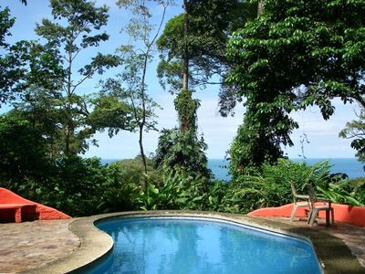Stunning Oceanview Pool,shaded by ancient rainforest giants