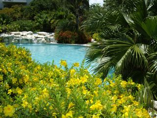 Providenciales - Provo condo photo - Second Pool with Hot Tub