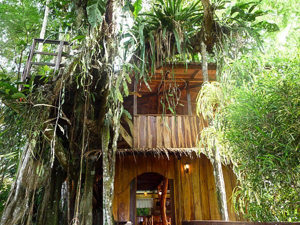 Enchanted tree house experience with all the vrbo for Tree house costa rica