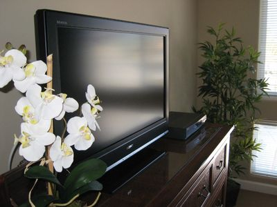 Plasma TVs in every room, WiFi and free Cable