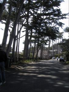 Lovely street in Carmel Point neighborhood