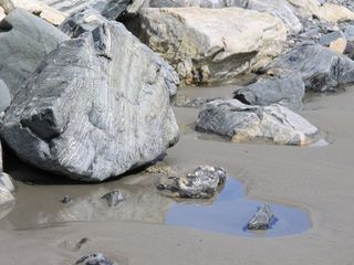 Hampton cottage photo - Heart shaped rocks ... and tidal pools too