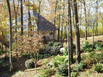 Hot Springs house rental - Serenity House in the Spring
