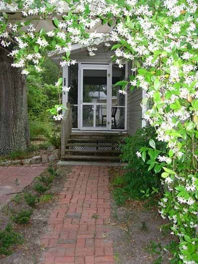 Jasmine, magnolia and Spanish moss-covered oaks adorn this old south cottage.