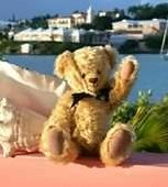VRBO Bear loved Villa Sea Star's oceanfront location!