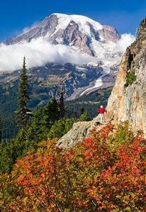 Mt Rainier National Park entrance is only 4 mi away!