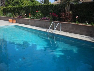 Encino house rental - Pool and garden. The pool is unheated but very comfortable.