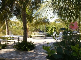Sanibel Island condo photo - Picnic area, the Grove offers gas grills, tables & lighting