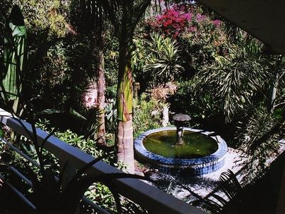Tropical Garden & Fountain