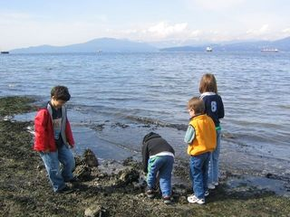 North Vancouver house photo - Seashell hunting at Cates Park