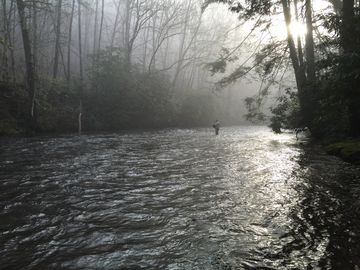 Lake Nantahala cabin rental - Fly Fishing at its Best!