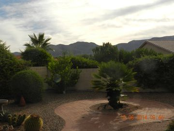 Oracle house rental - Private back yard with view
