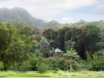 Wainiha house rental - Nestled in the lush Wainiha River Valley, your private piece of paradise.