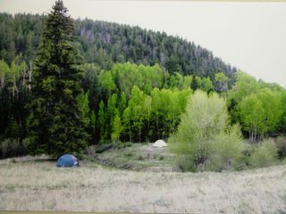 Guffey farmhouse photo - Campsite on Aspen Creek