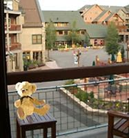 The Bear on the Balcony, Watching People Walk to and from the Slopes!