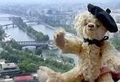 The intrepid Bear on the observation deck of the Eiffel Tower.