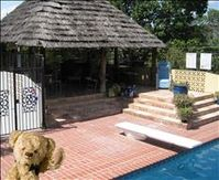 San Antonio Vacation Rental with a pool!