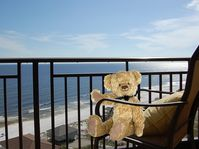 Taking in refreshing gulf breezes, check out the view!