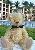 VRBO Bear enjoying the St. Thomas Ritz